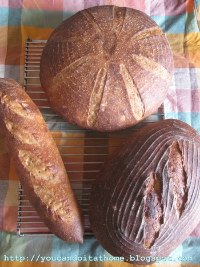 Pain au Levain with wheat germs