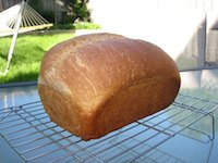 Tassajara Basic Bread, 50% Whole Wheat