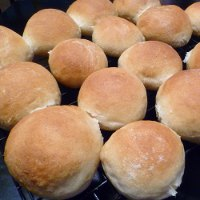 White Whole Wheat Buns