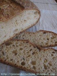 7-type Flour Sourdough with Wheat Germ