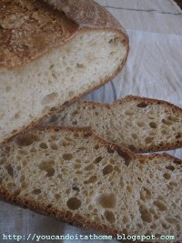 7-type Flour Sourdough with Wheat Germ