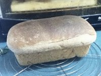 KAF 100% Whole Wheat Bread