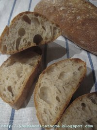 Ciabatta with Wheat Germs and Olive Oil