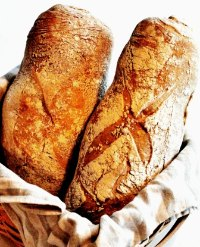 Rustic Italian Bread With Durum