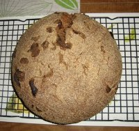 Rye Sourdough Boule with Sprouted Wheat