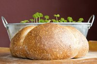 Wheat Beer Bread