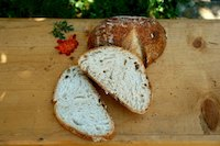 Apple Yeast Water Bread