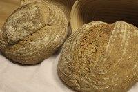 Whole Wheat and Rye Sourdough Bread