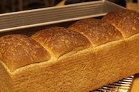 Whole Wheat Toast Bread