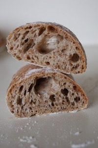Beer Yeast Sour Dough