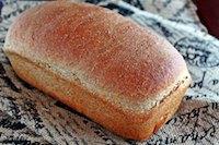 Ricotta Olive Oil Bread