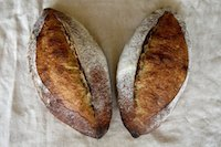 San Joaquin Sourdough