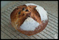 Raisin And Rosmary Loaf #2