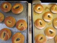La Brea Sourdough Bagels
