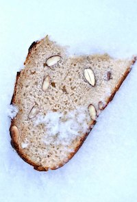 Almond Bread With Durum Wheat