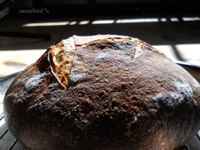 Joe Ortiz Pain De Campagne