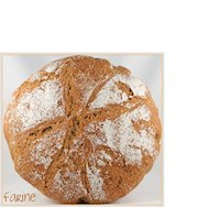 No-Knead Emmer Bread
