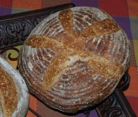 San Francisco Sourdough 4.5-from Dave Snyder