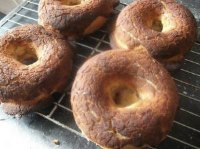 Dutch Crunch Sourdough Bagels