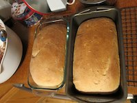 Oatmeal Bread