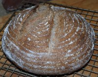 100% Whole Wheat Desem Bread
