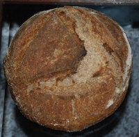 Whole Wheat Desem, Quinoa, Barley Flour &  Onions