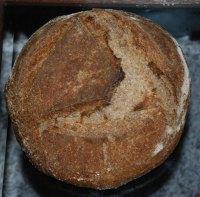 Whole Wheat Desem, Quinoa, Barley Flour & Onions