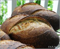 Diane Andiel's Norwich Sourdough