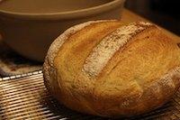 Shephard's Bread