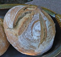 Sprouted Wheat Oat Flour Sourdough