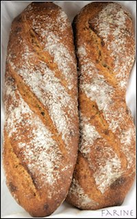 50% Whole Red Fife Wheat Bread