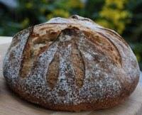 Durum, Potatoes Yeast Water Sourdough