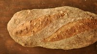 Sunflower Seed Batard