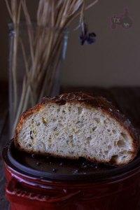 Zucchini Parmesan Sourdough