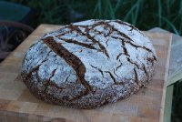Pumpernickel Yeast Water Miche