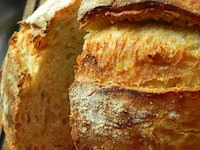 Ciabatta With Poolish