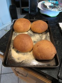 Squaw Bread