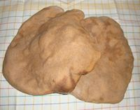Whole Wheat Large Soudough Naan