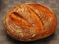 Durum Semolina 36 Hour Sourdough Boules
