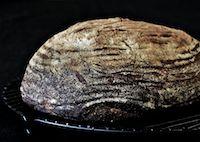 Country Semi Sourdough Bread