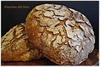 Alsatian Beer Bread