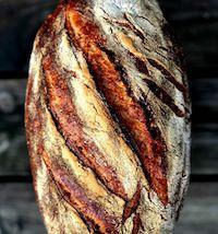 Durum Wheat Sourdough