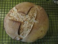 Apple Yeast Rye Bread