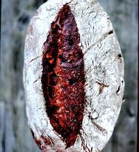 Chocolate-Chestnut Sourdough Bread