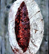 Chocolate-Chestnut Sourdough Bread