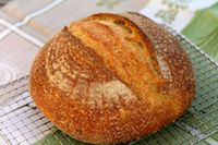 Semolina Sourdough Boule