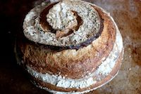 City Bread, In White Spelt