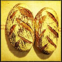 Light Rye With Caraway