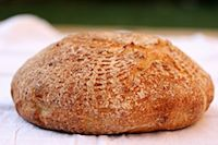 Country Boule With Spelt & Sourdough