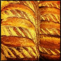 Sourdough With 20% Barley Flour